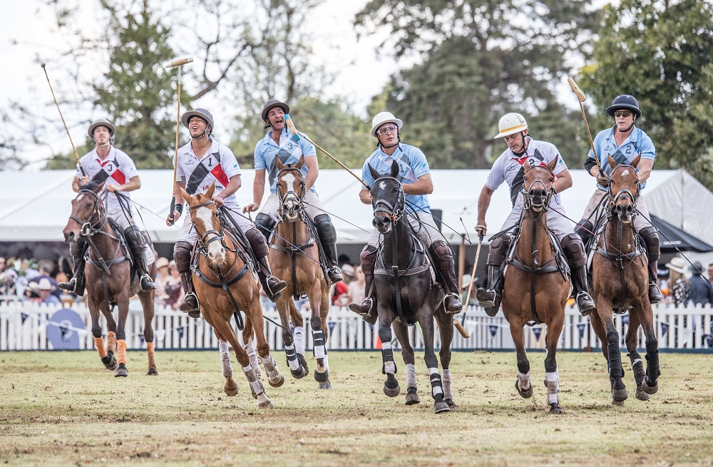 Polo in the Bay Players